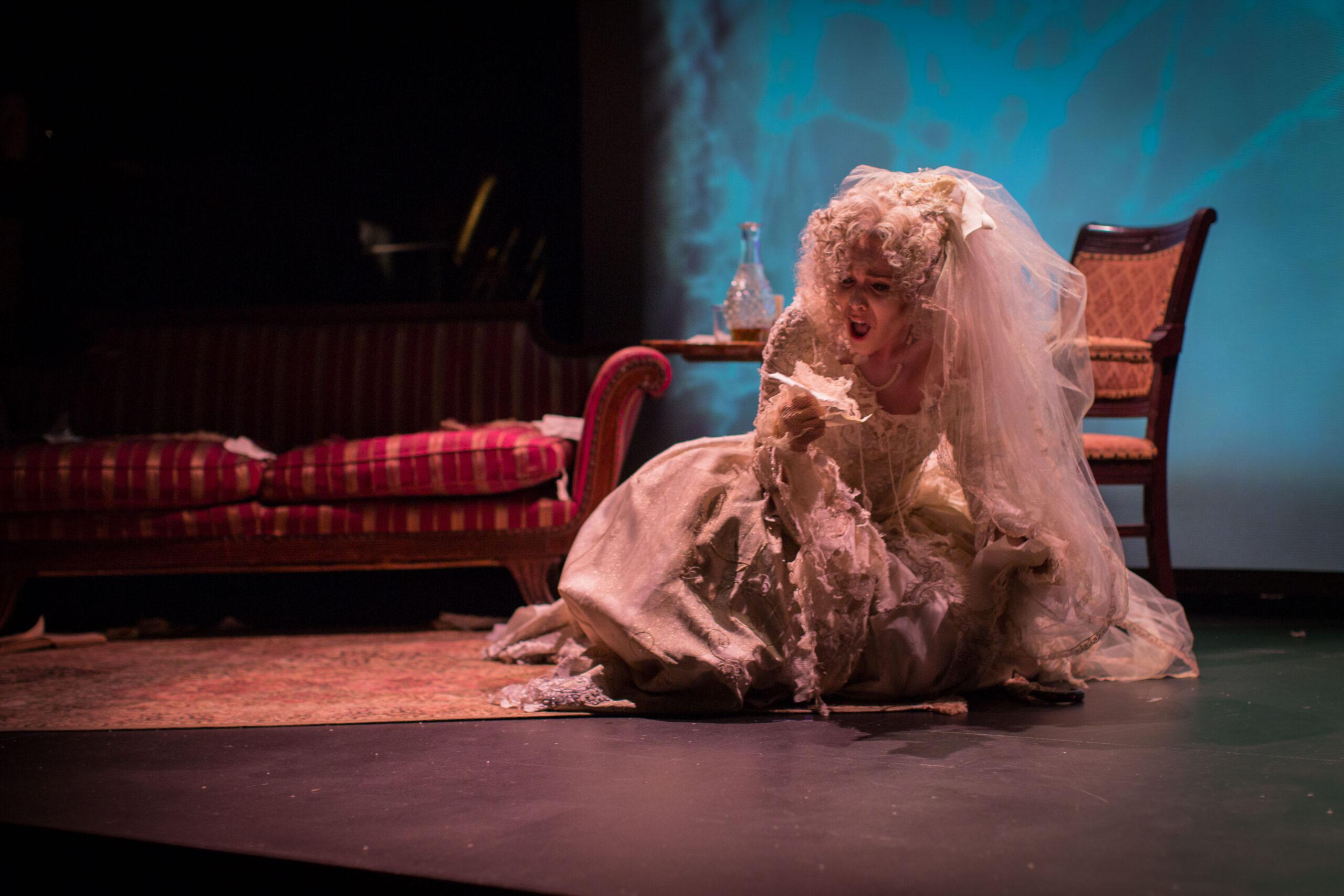 Reviews for Miss Havisham's Wedding Night & A Water Bird Talk
